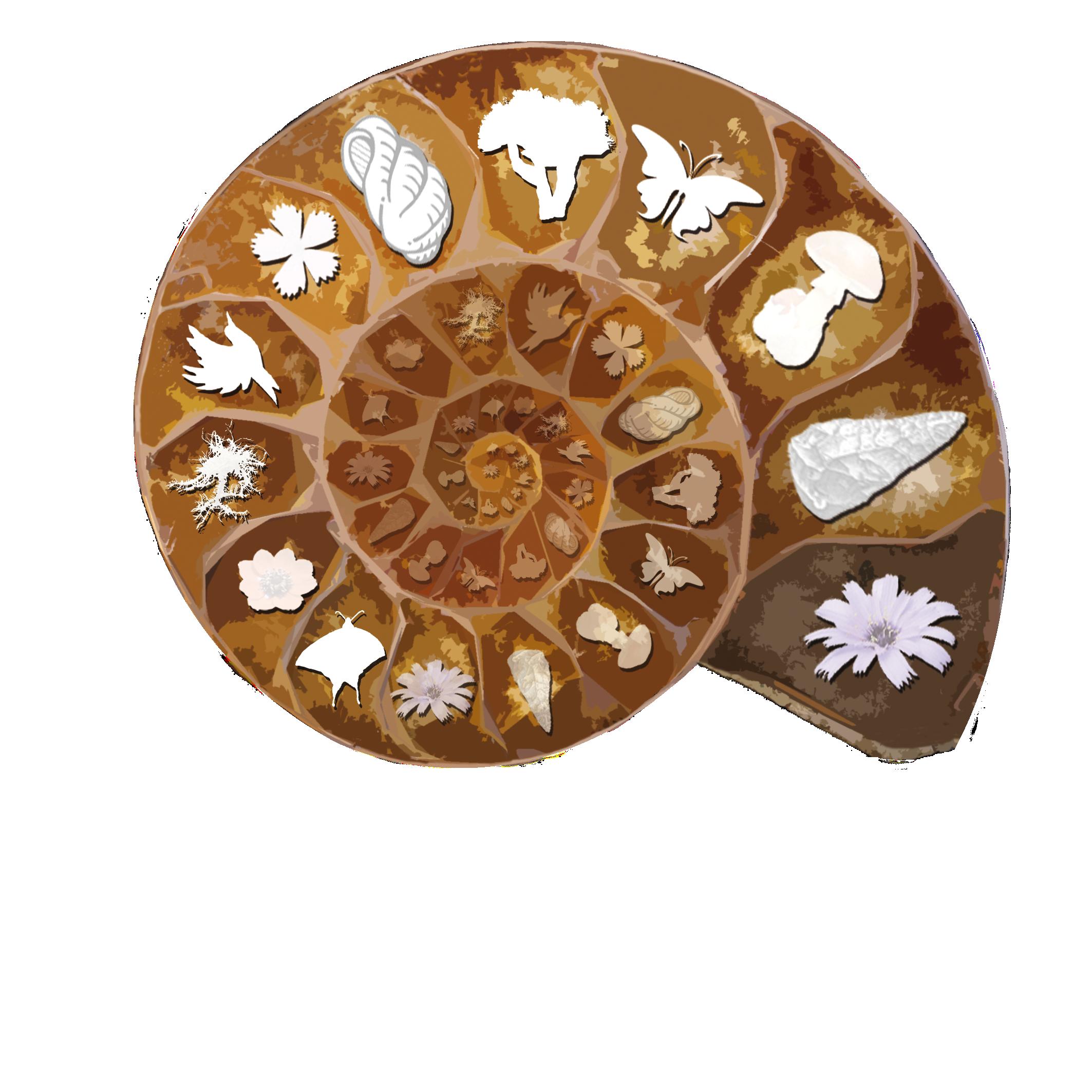 SESNNG